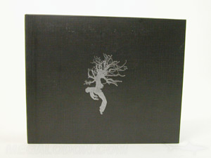 cd jacket LP style wide oversized 5 x 7 inch silver foil stamping