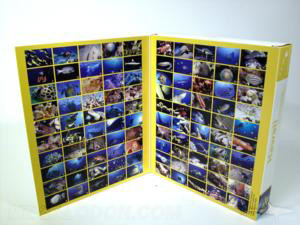 large software box 4pp front cover flap full color printing